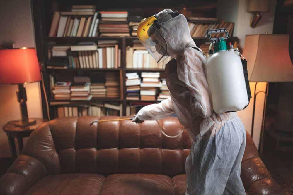 meth clean up wellington